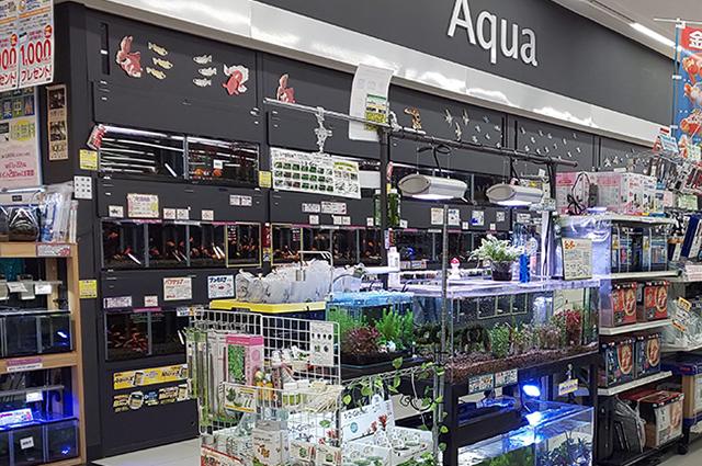 Story 大倉山店